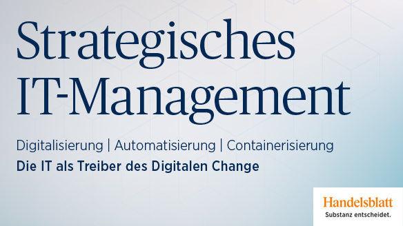 Strategisches IT Management