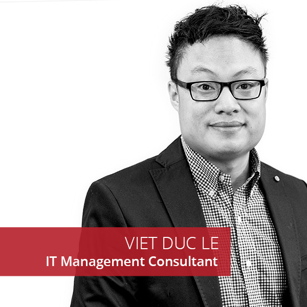 Viet Duc Le IT Management Consultant