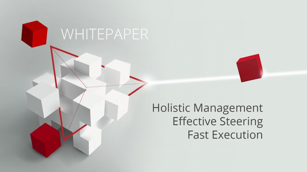 Holistic Management Effective Steering Fast Execution Clausmark Whitepaper Header