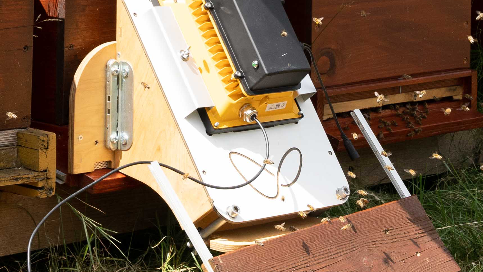 Tracking system for beehives